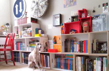Shelves for comics, manga and merchandising figurines.