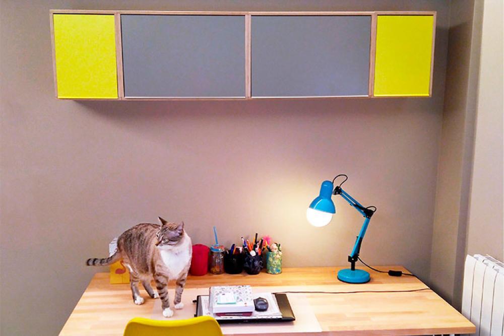 Estanterias a prueba de gatos. Las estanterias colgadas en la pared aguantan hasta 25kg.