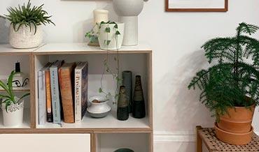 BrickBox estantes para plantas